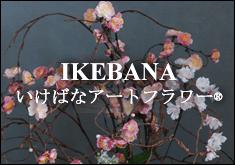 あーかんび  いけばな 活け花  造花専門店 ロゴ