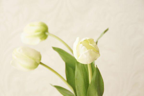 シンプル 人工水 チューリップの造花