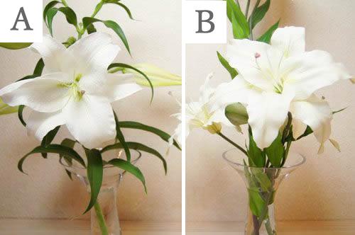 どっちが本物 生花と造花 ほんものそっくり造花 カサブランカ